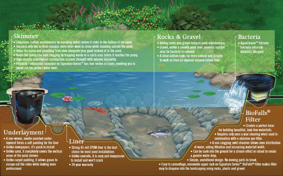 Ecosystem Pond Installation Maryland