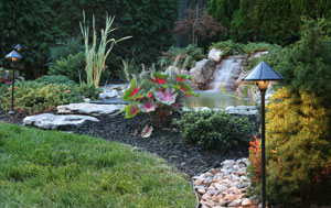 Landscape Lighting Arlington County VA